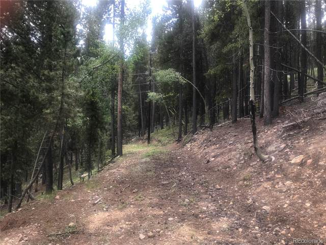 Apache Road, Evergreen, CO 80239 (#3432100) :: The Gilbert Group