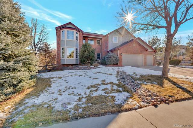 10904 Puma Run, Littleton, CO 80124 (#3432792) :: The Healey Group