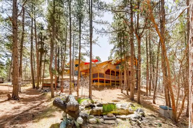 203 Staghorn Way, Franktown, CO 80116 (#3438348) :: The DeGrood Team
