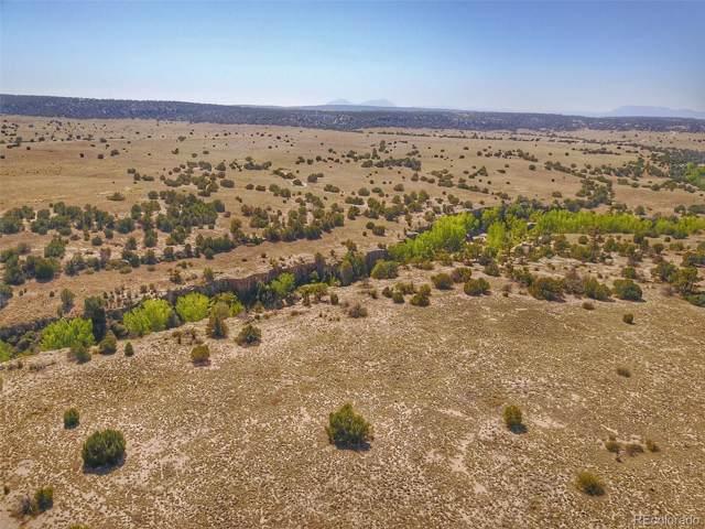 Cedarwood, Colorado City, CO 81019 (#3439757) :: Harling Real Estate