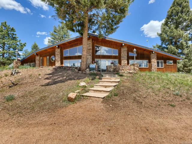 47 Fossil Drive, Florissant, CO 80816 (#3446945) :: James Crocker Team