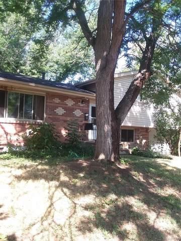 4468 Hamilton Court, Boulder, CO 80305 (MLS #3447979) :: 8z Real Estate