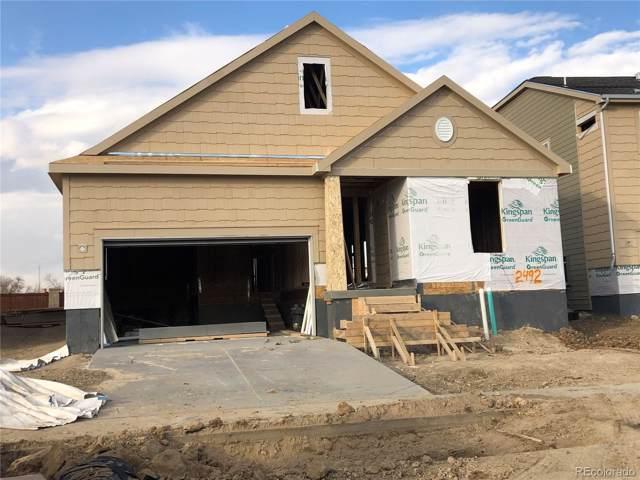 2492 Tyrrhenian Circle, Longmont, CO 80504 (MLS #3448295) :: 8z Real Estate