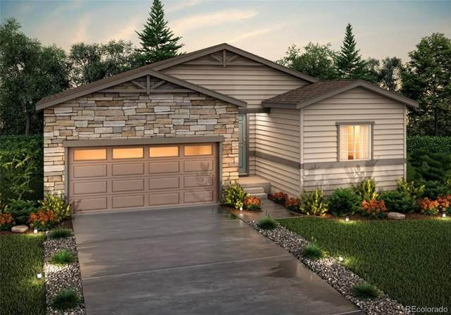 5150 Blue Lunar Lane, Castle Rock, CO 80104 (#3449101) :: The Dixon Group
