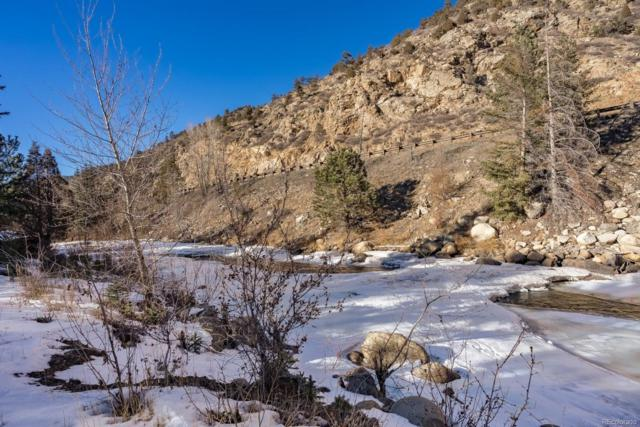 Little Warrior Stanley Road, Idaho Springs, CO 80452 (#3449361) :: Mile High Luxury Real Estate