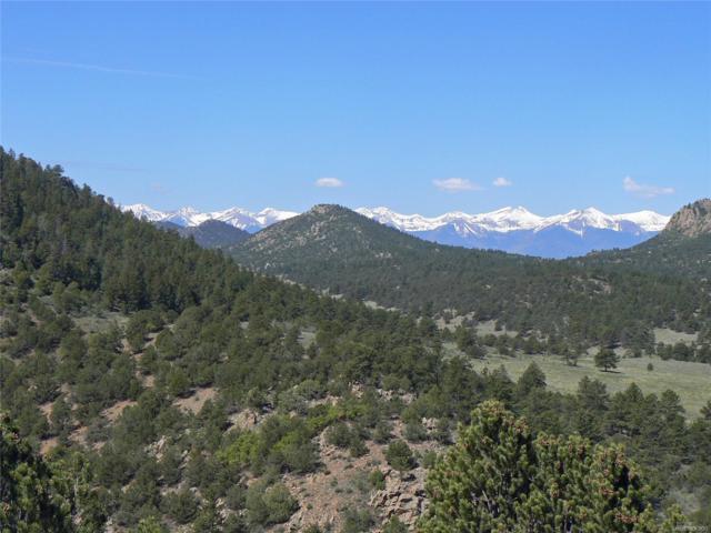 Elk Trail, Westcliffe, CO 81252 (#3449710) :: Structure CO Group