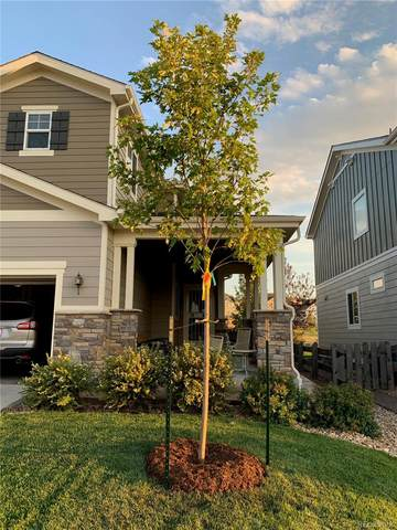 23688 Eagle Bend Lane, Parker, CO 80138 (#3453819) :: The HomeSmiths Team - Keller Williams