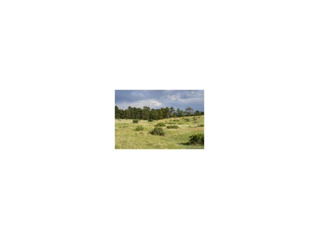 9750 Sara Gulch Circle, Parker, CO 80138 (MLS #3454332) :: 8z Real Estate