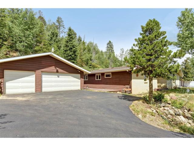 9921 City View Drive, Morrison, CO 80465 (MLS #3460352) :: 8z Real Estate