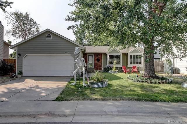 8632 S Everett Street, Littleton, CO 80128 (#3460728) :: Symbio Denver
