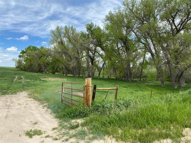 13105 County Road 154, Kiowa, CO 80117 (MLS #3463428) :: Find Colorado