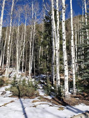 Vacant Land, Jasper, CO 81144 (#3463718) :: The DeGrood Team
