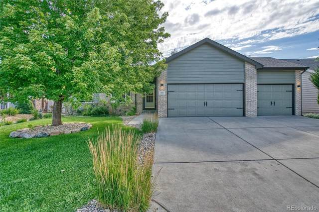 304 Rock Bridge Drive, Windsor, CO 80550 (MLS #3464666) :: 8z Real Estate