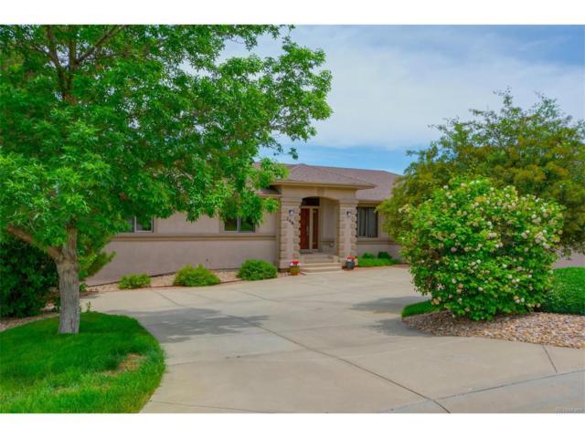248 Emerald Court, Castle Rock, CO 80104 (MLS #3466304) :: 8z Real Estate