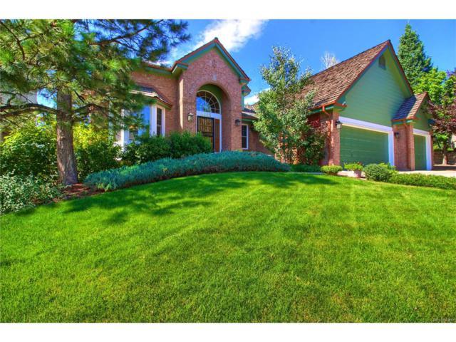 6665 S Crocker Way, Littleton, CO 80120 (MLS #3466798) :: 8z Real Estate