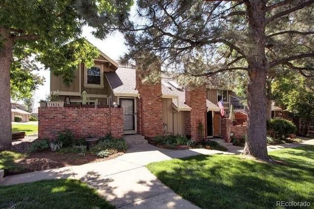 11826 Elk Head Range Road, Littleton, CO 80127 (#3468776) :: The Colorado Foothills Team | Berkshire Hathaway Elevated Living Real Estate