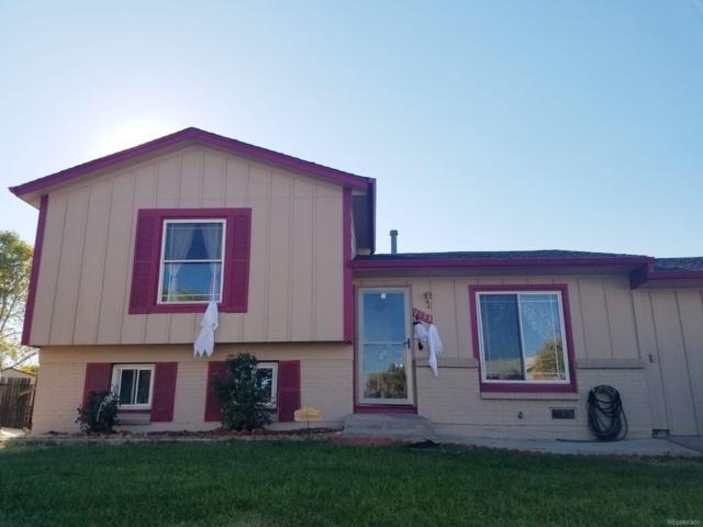 9753 Columbine Court, Thornton, CO 80229 (#3470704) :: House Hunters Colorado
