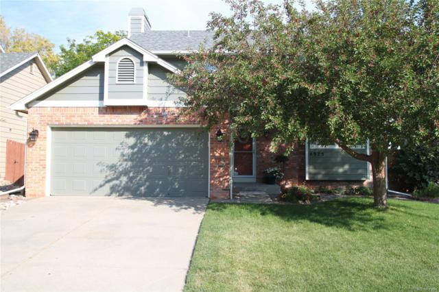 4925 E Ashton Avenue, Castle Rock, CO 80104 (#3473284) :: Sellstate Realty Pros