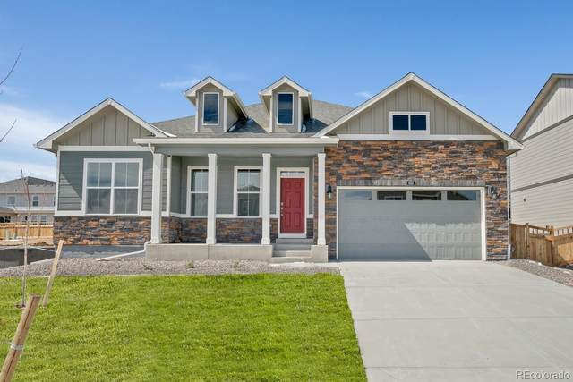 1465 Wingfeather Lane, Castle Rock, CO 80108 (MLS #3474454) :: 8z Real Estate