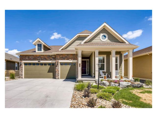7799 Spruce Court, Thornton, CO 80602 (MLS #3480156) :: 8z Real Estate