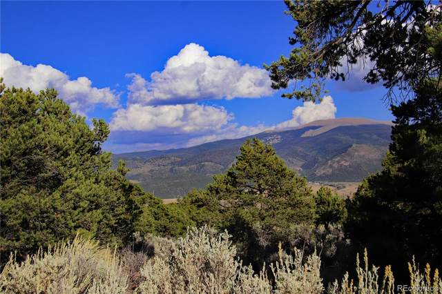 Tract 39 White Tail Court, San Luis, CO 81152 (#3480554) :: The DeGrood Team