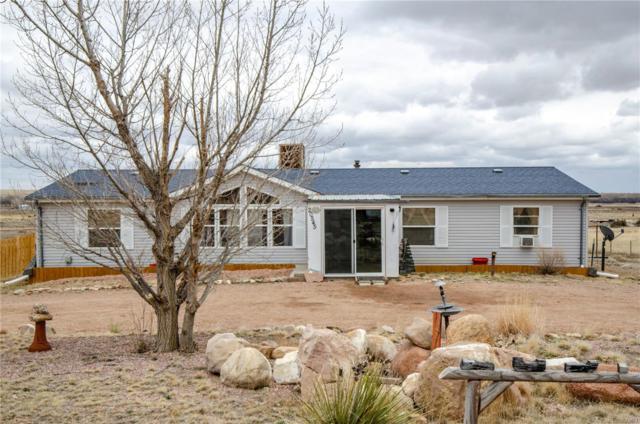 20545 El Nino Point, Fountain, CO 80817 (#3481762) :: Venterra Real Estate LLC