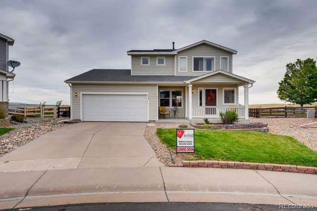 7984 Cougar Lane, Littleton, CO 80125 (MLS #3482054) :: 8z Real Estate