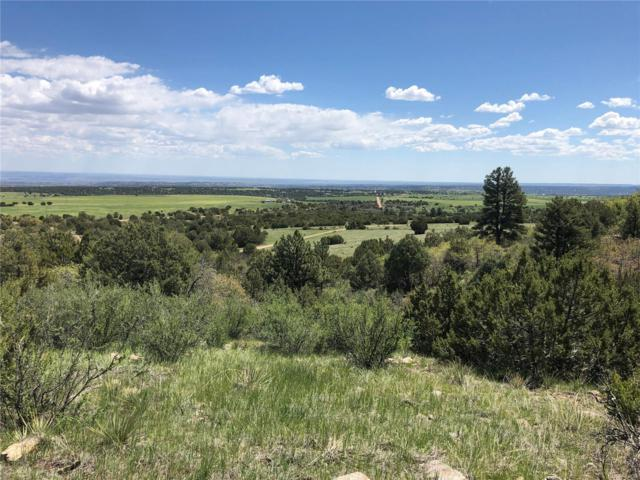Savage Road, Beulah, CO 81023 (#3484450) :: HomePopper