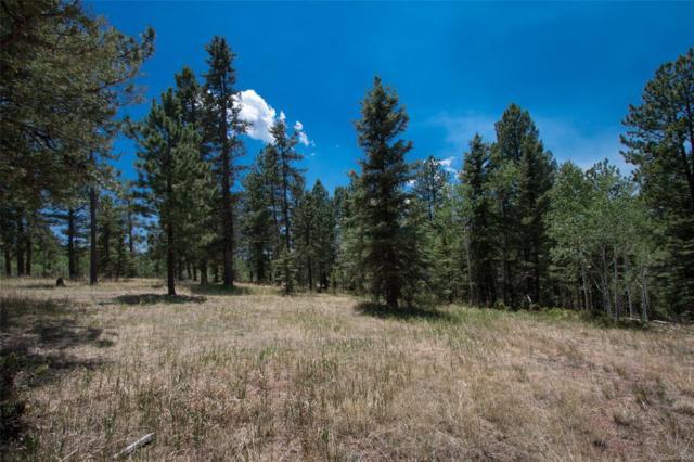 381 Black Bear Drive, Divide, CO 80814 (MLS #3484632) :: 8z Real Estate