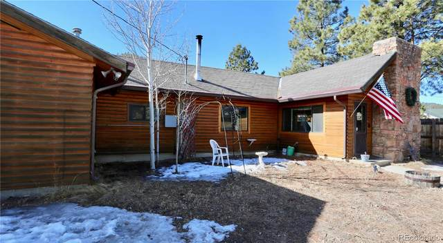 16697 Jefferson Street, Pine, CO 80470 (#3485603) :: The Dixon Group