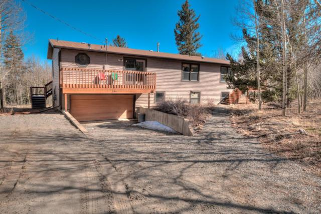 284 Lamb Mountain Road, Fairplay, CO 80440 (#3491116) :: Bicker Realty