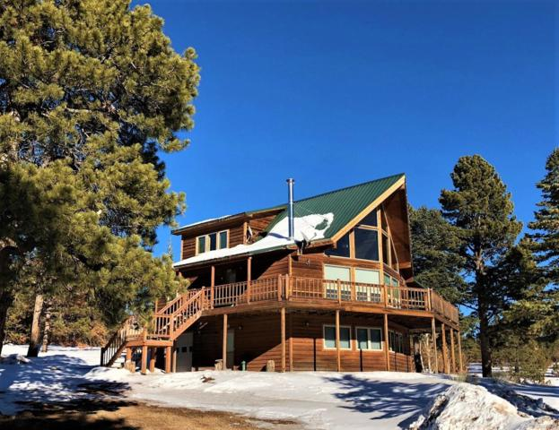 605 Leslie Loop, Fort Garland, CO 81133 (#3494833) :: Compass Colorado Realty