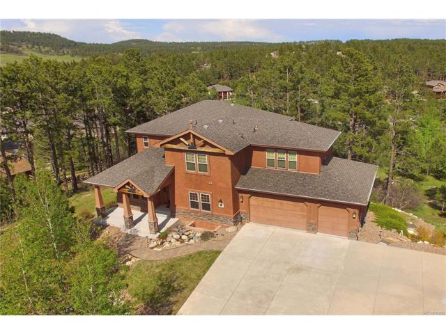 1183 Greenland Forest Drive, Monument, CO 80132 (MLS #3496160) :: 8z Real Estate