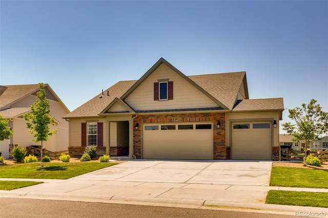 15549 Quince Circle, Thornton, CO 80602 (#3496171) :: Re/Max Structure