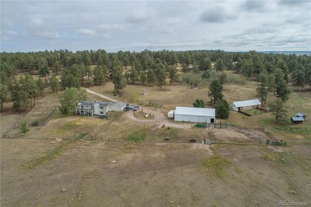 18230 Wedemeyer Road, Kiowa, CO 80117 (#3500085) :: The DeGrood Team