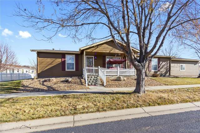 6360 Audubon Street, Frederick, CO 80530 (MLS #3506438) :: 8z Real Estate