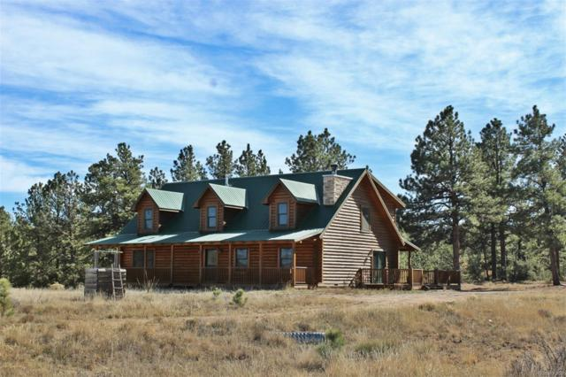 294 Arapahoe Road, Westcliffe, CO 81252 (#3512497) :: 5281 Exclusive Homes Realty