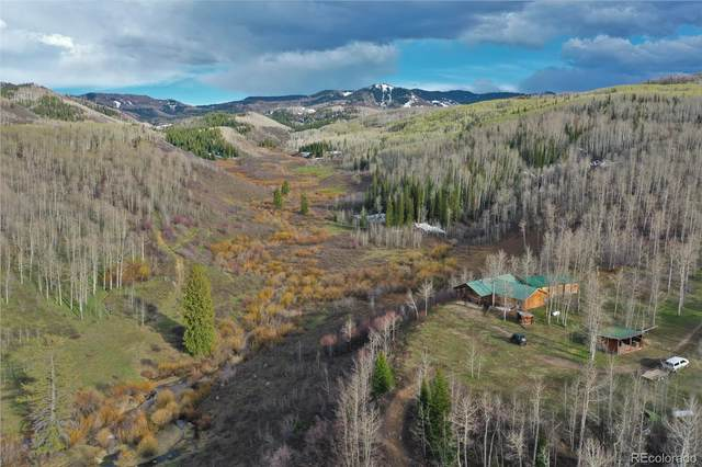 2604 County Road 53, Meeker, CO 81641 (#3516447) :: Re/Max Structure