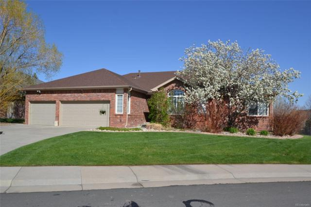5674 Fig Way, Arvada, CO 80002 (#3518649) :: Sellstate Realty Pros
