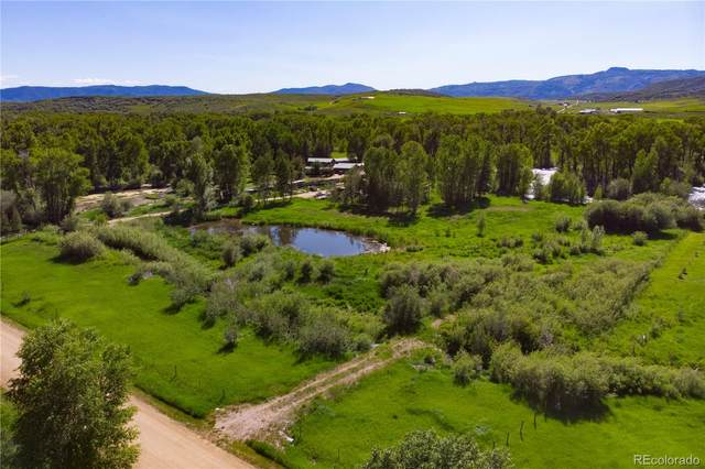 50115 Moon Hill Drive, Steamboat Springs, CO 80487 (MLS #3524123) :: Bliss Realty Group