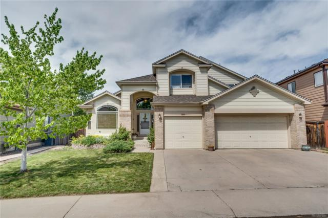 9389 Desert Willow Trail, Highlands Ranch, CO 80129 (#3524134) :: Sellstate Realty Pros