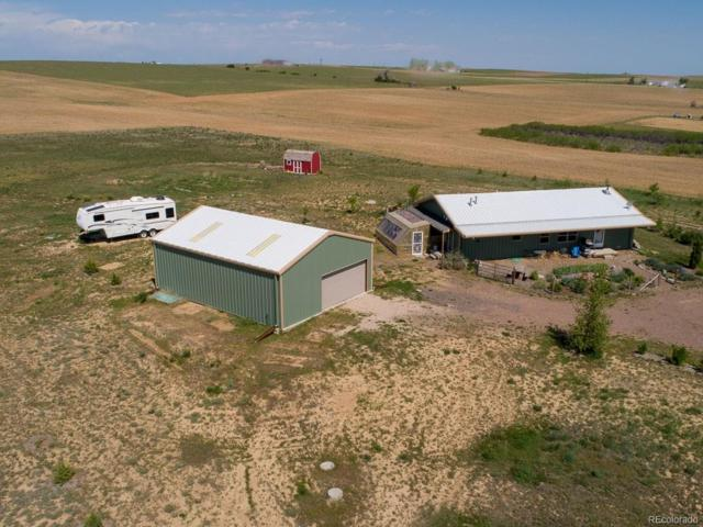 6125 Wolf Creek Road, Strasburg, CO 80136 (#3528474) :: The Pete Cook Home Group