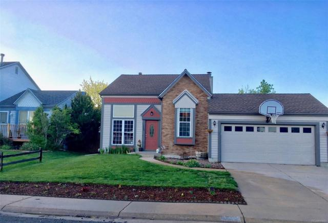 11523 W 101st Avenue, Westminster, CO 80021 (#3529013) :: The Heyl Group at Keller Williams