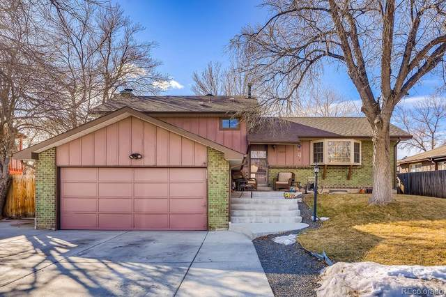 13085 Monroe Drive, Thornton, CO 80241 (MLS #3529748) :: 8z Real Estate