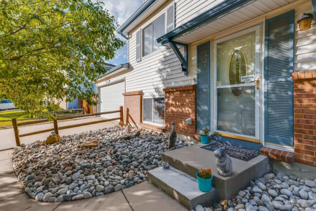 10901 W 106th Avenue, Westminster, CO 80021 (#3529821) :: The City and Mountains Group