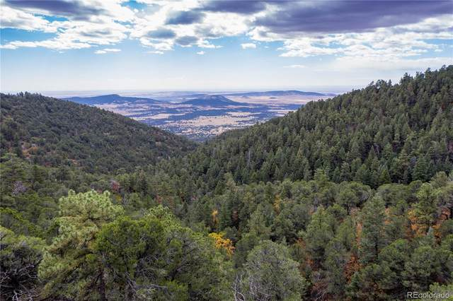 Lot 8 Henry Ride Heights, Colorado Springs, CO 80926 (#3535514) :: The DeGrood Team