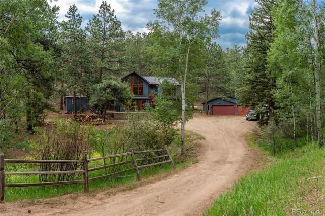558 Mockingbird Trail, Bailey, CO 80421 (#3535916) :: The HomeSmiths Team - Keller Williams