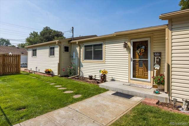 262 6th Street, Frederick, CO 80530 (#3536626) :: The DeGrood Team