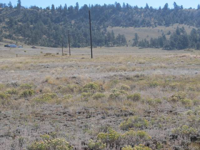 0 Coyotero Trail, Hartsel, CO 80449 (#3537110) :: THE SIMPLE LIFE, Brokered by eXp Realty