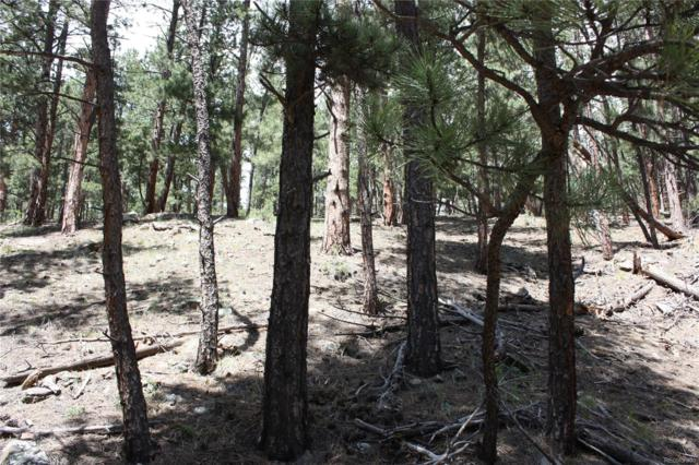 27425 Troublesome Gulch Road, Evergreen, CO 80439 (#3537293) :: Structure CO Group